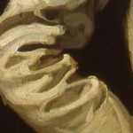 Self-portrait in white jacket. close-up paint